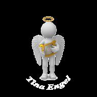 Tina Engel Retina Logo